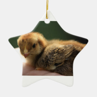 Star baby chick ceramic star decoration