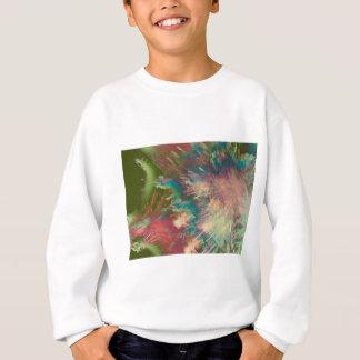 Star explode sweatshirt