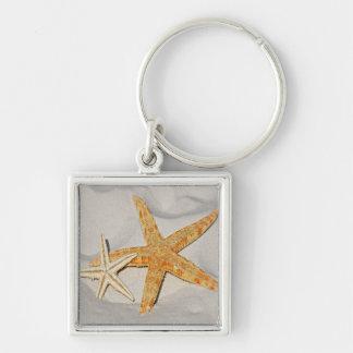 Star Fish at the Beach Key Ring