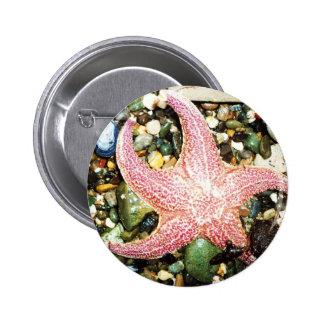 star fish pin