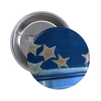 Star Fish Buttons