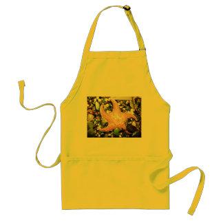 star fish standard apron