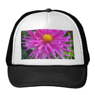 Star Flower Trucker Hats