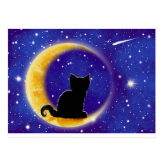 Star Gazing Cat Postcard
