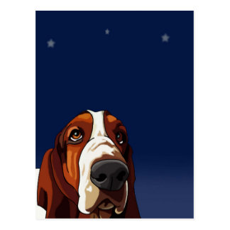 Star Gazing Hound Postcard
