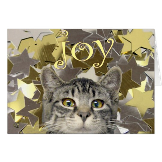 Star Kitten Card