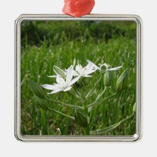 Star of Bethlehem flowers  Ornithogalum umbellatum Metal Ornament