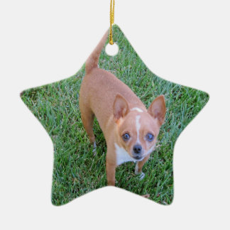 Star Ornament: Chihuahua -- or Your Pet Ceramic Star Decoration