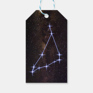 Star Sign Capricorn Gift Tags