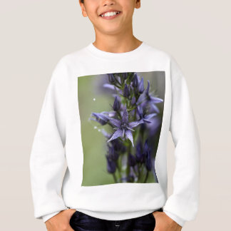 Star swertia (Swertia perennis) Sweatshirt