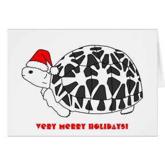 Star Tortoise Christmas Card (elf hat)