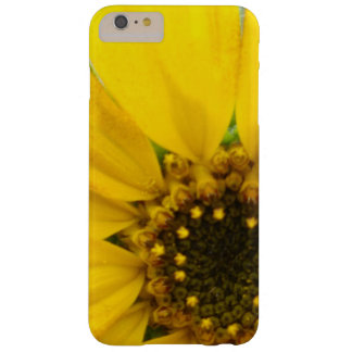 Starburst Sunflower Barely There iPhone 6 Plus Case