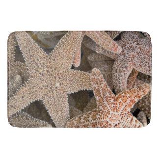 Starfish all around bath mat