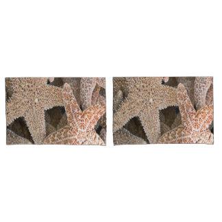 Starfish all around pillowcase