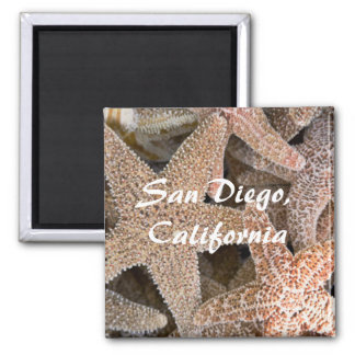 Starfish all around , San Diego , California Magnet