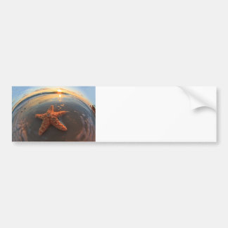 Starfish and Bubbles at Sunset Bumper Sticker