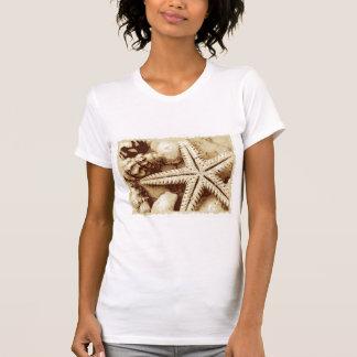Starfish and Seashells Womens T-Shirt