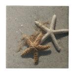 Starfish Ceramic Tile Trivet