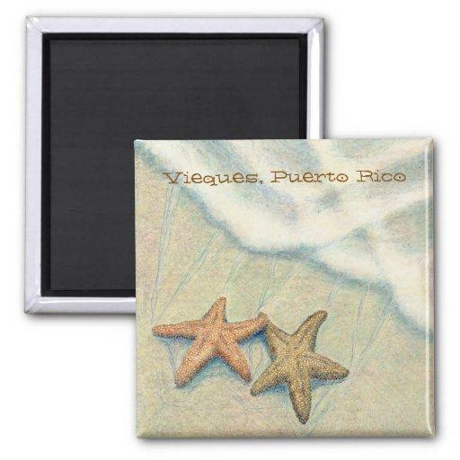 Starfish Fridge Magnets