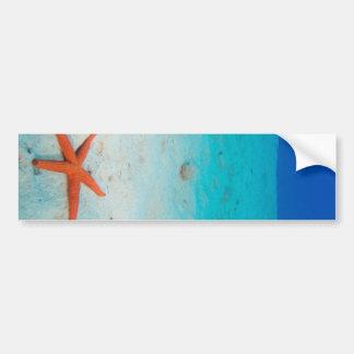 Starfish on a sand dune underwater bumper sticker