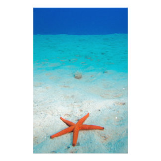 Starfish on a sand dune underwater personalised stationery