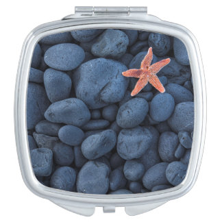 Starfish On Black Rocks Along The Coast | Iceland Makeup Mirrors