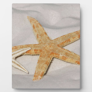 STARFISH ON THE BEACH PHOTO PLAQUE