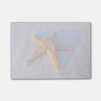 Starfish On White Sand Post-it Notes