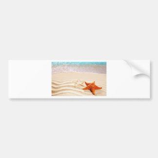 Starfish, Sand Stars, At The Beach Bumper Stickers