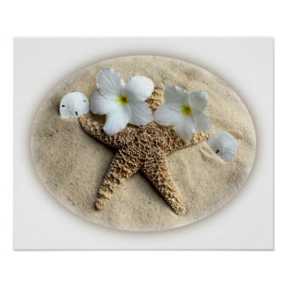 Starfish Shells Plumeria on Sand Poster