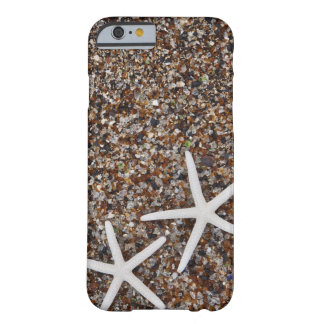 Starfish skeletons on Glass Beach Barely There iPhone 6 Case
