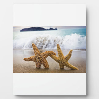Starfish Together Forever Photo Plaques
