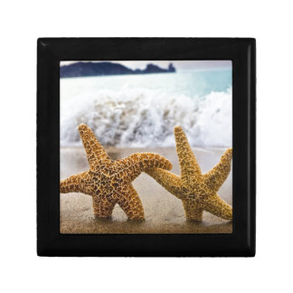 Starfish Together Forever Small Square Gift Box