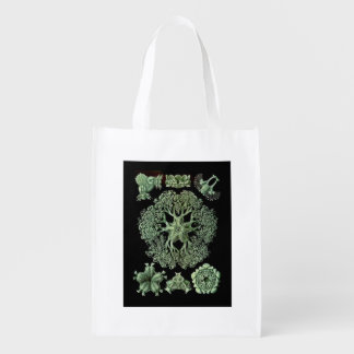 Starfish with Delicate Arms Ophiodea Reusable Grocery Bag