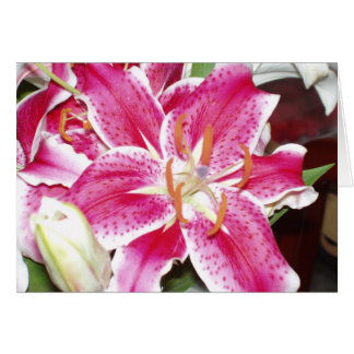 Stargazer Lilies Blank Inside Greeting Card