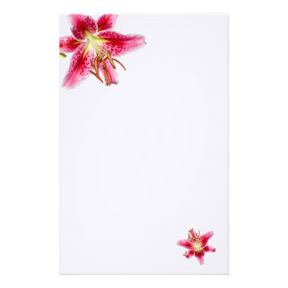 Stargazer Lily Decorated Blank Stationery