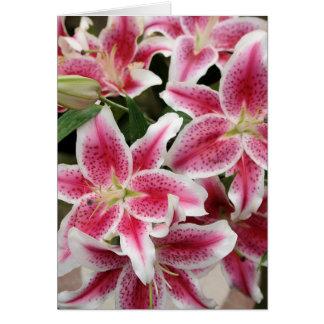 Stargazer Lily Note Card - Blank