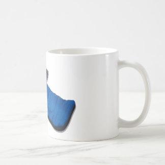StarGazing081510 Mugs