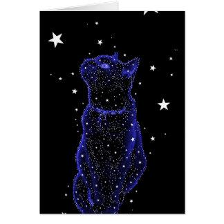 Stargazing Cat Note Card