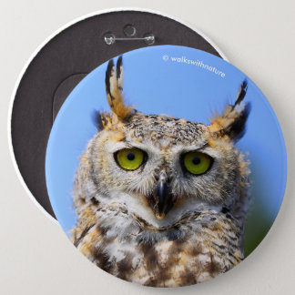 Staring Contest with a Beautiful Great Horned Owl 6 Cm Round Badge