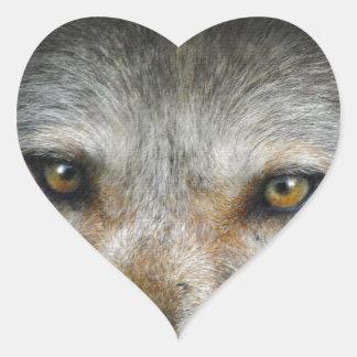 Staring Grey Wolf Eyes Wildlife Art Heart Sticker
