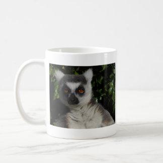 Staring Lemur Coffee Mug