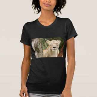 Staring Lioness T Shirts