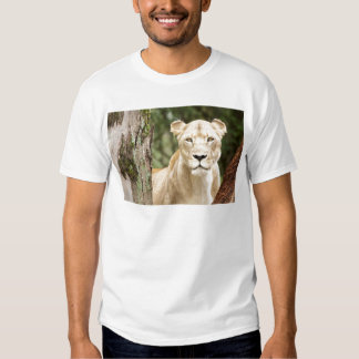 Staring Lioness Tee Shirts