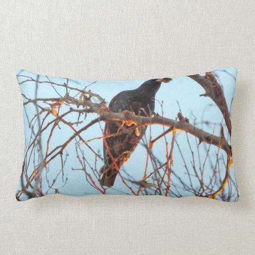starling at sundown throw pillows