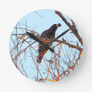 starling at sundown wallclock