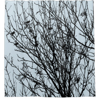Starlings in a Tree - Lt Blue Gray #D3E5EF Shower Curtain
