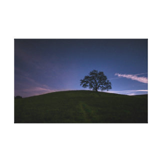 Starry Hill Canvas Print