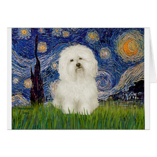 Starry Night - Bolognese 1 Card