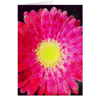 Starry Pink Gerbera Daisy Blank Greeting Card